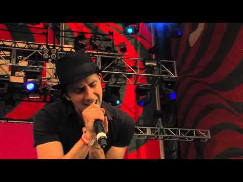 Maximo Park Live - I Want You To Stay @ Sziget 2012