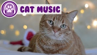Music For Cats! Help Relax Your Kitten!
