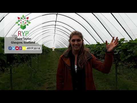 Claire Taylor - Glasgow, Scotland (Vlog 3)