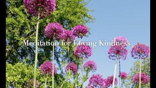 Meditation for Love and Kindness (Meditation for anxiety as heard on BBC Radio London)