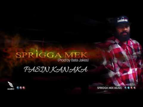 Sprigga Mek - PASIN KANAKA  (Prod by Bata Jakes)