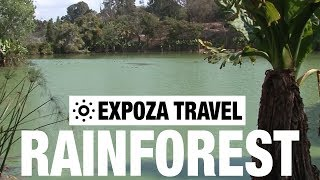 Rainforest (Madagascar) Vacation Travel Video Guide