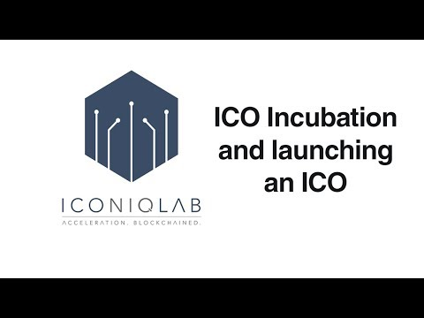 ICO Incubation, Launching an ICO, Iconiq Lab Interview