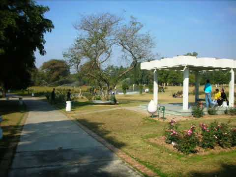 Rose Garden Chandigarh Youtube