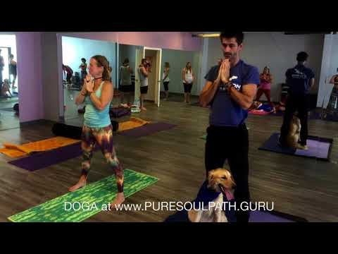 Dog Yoga - In Clermont, FL
