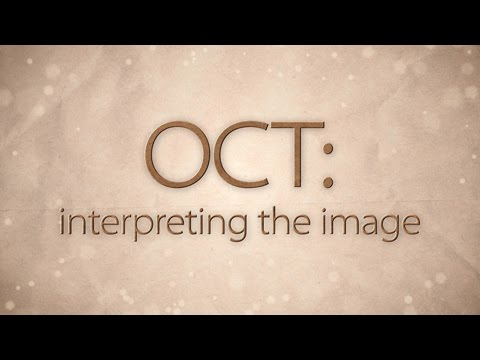 OCT: Interpreting the image