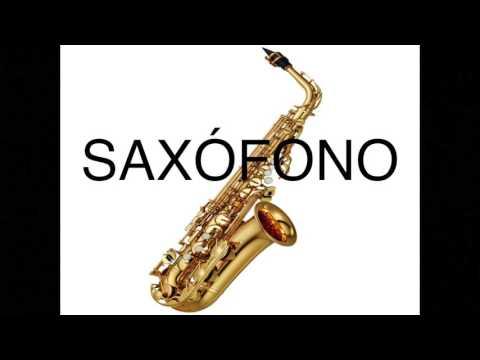 Spanish Class 101: Music Instruments