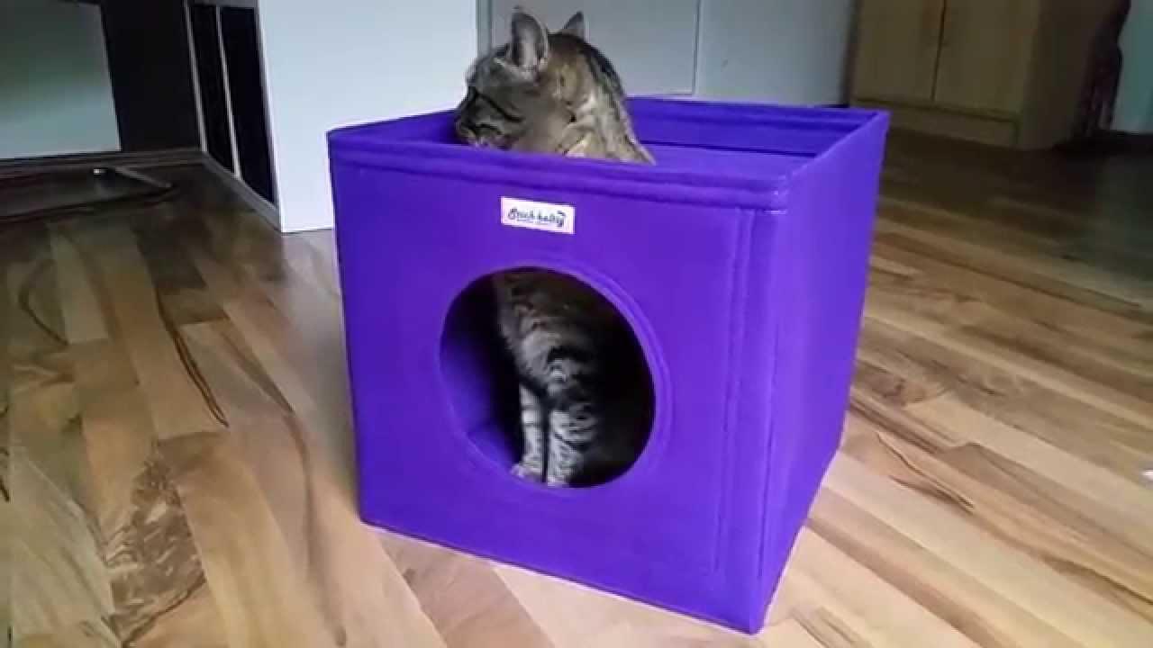 Katzenhöhle Selber Bauen