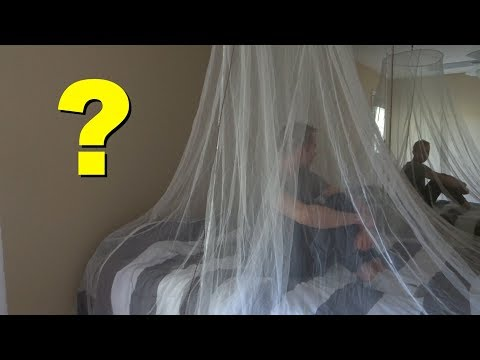 What is the best mosquito net? Don't make this mistake!