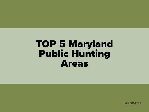 Top 5 Maryland Public Hunting Areas