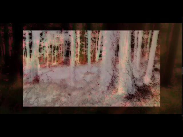 Tusk Virtual 2020 - Eiko Ishibashi & Jim O'Rourke