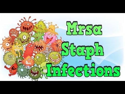 Mrsa Staph Infections, Mrsa Screening, Staphylococcus Aureus Mrsa, Mrsa Treatment Guidelines
