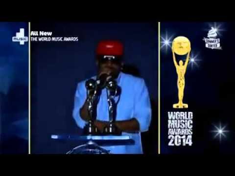 The world music Awards 2014