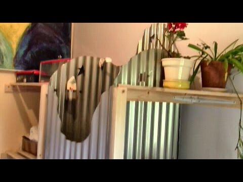 video gartendusche helena. Black Bedroom Furniture Sets. Home Design Ideas