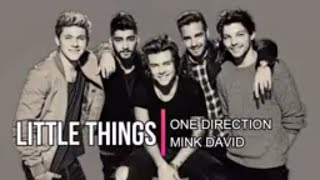 One Direction | Little Things | Lyrical |  Mink David