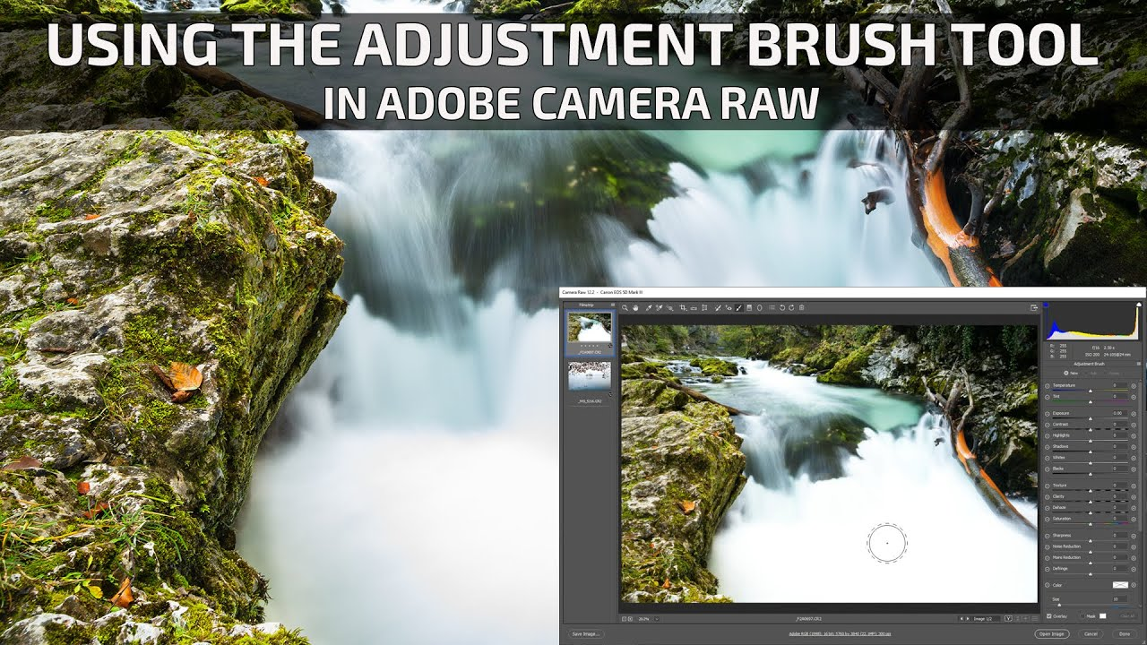 How to Erase & Delete Adjustments in Adobe Camera Raw