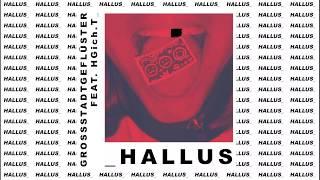 GROSSSTADTGEFLÜSTER feat. HGich.T - HALLUS (OFFICIAL AUDIO)