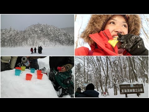NINA TRAVELS | JAPAN #5 : EXPLORING THE SNOW FOREST
