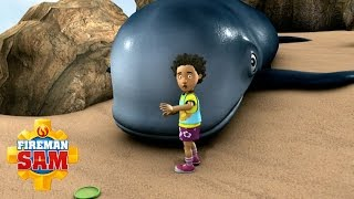 Fireman Sam US Official: The Lost Whale of Rock Pools