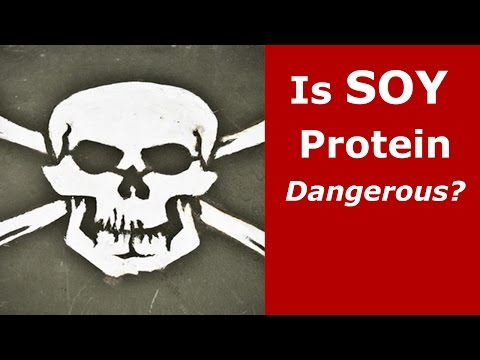 Is Soy Protein Dangerous?