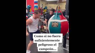 Canelo enseñando a Brandon Moreno. 💪🏾🇲🇽