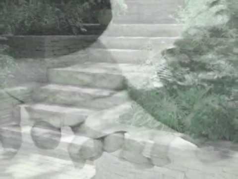 VORREI - (Francesco Guccini) con testo