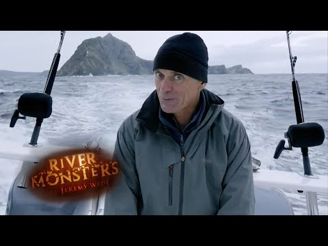 The Fanged Predator | HORROR STORY | River Monsters