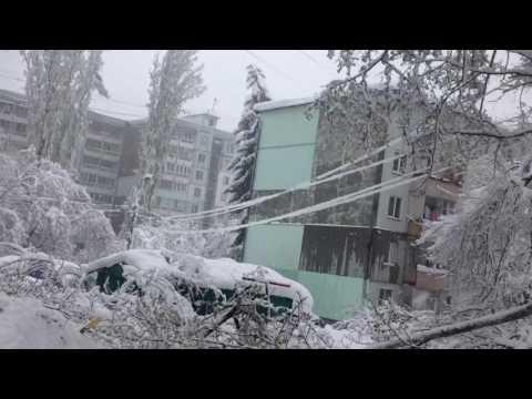 Кишинев в снегу. 21 апреля. Упавшие деревья, поврежденные автомобили.