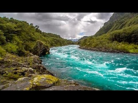 Relaxing Music with Healing River Sounds - 7 Hours!!! l Sen Vàng VTV
