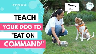 How to Teach your dog to 'Eat on command' or 'Impulse control' ll Step by Step Guide ll