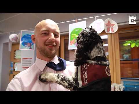 Dog Helps Deaf Teacher In Classroom