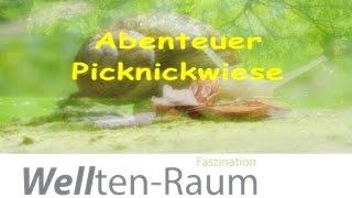 """Von Mensch zu Mensch """"Abenteuer Picknickwiese"""""""