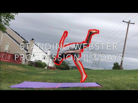 Webster  Loser Flip Progression ~ 2 Days