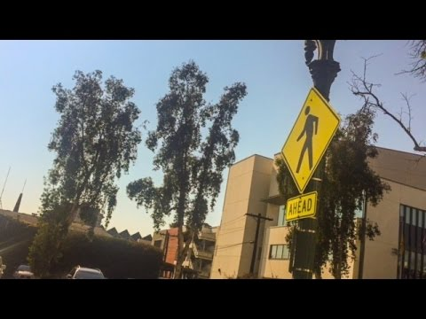 Nazi Glendale California