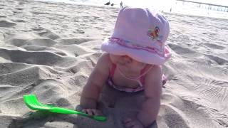 Sadie tumbles in the sand 5-7-2011 Thumbnail