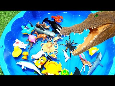 Wild Zoo Animals Toys! Baby Mom Learn Animals Names Education Toys for Kids Blue Pool