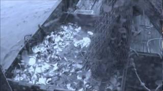 Камчатка. Рыбалка. Продолжение...(А Вы знаете как ловится рыба, которую Вы покупаете в магазинах? Вы видели красоту Камчатки? Смотрите..., 2011-12-24T20:51:43.000Z)