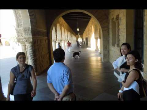 University of Stanford Walking Tour