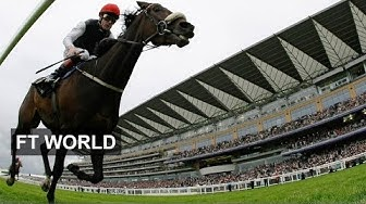 Ascot -- Qatar's golden ticket?
