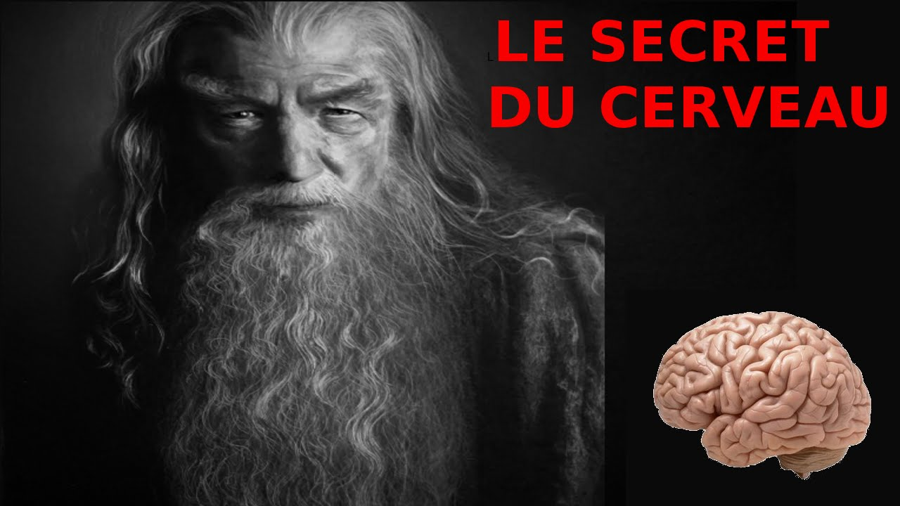 le secret du cerveau comment stimuler la partie non utilis e rmen 1 l 39 esprit viking youtube. Black Bedroom Furniture Sets. Home Design Ideas