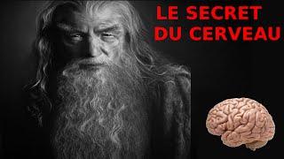 Le secret du cerveau: comment stimuler la partie non utilisée - Rmen#1 - L'esprit Viking