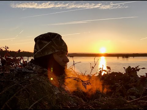 Welcome To Reelfoot Lake - Hunting