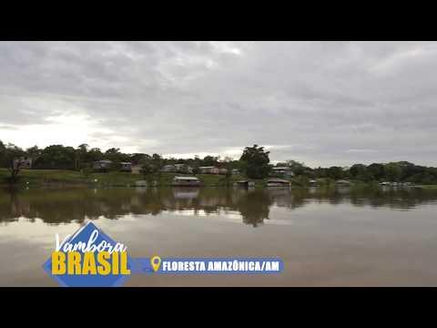 Floresta Amazônica/AM - Vambora Brasil