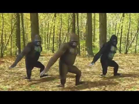 SABI SABI BY HENROTION  (APE DANCE)