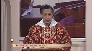 Daily Catholic Mass - 2016-06-29 - Fr. Miguel