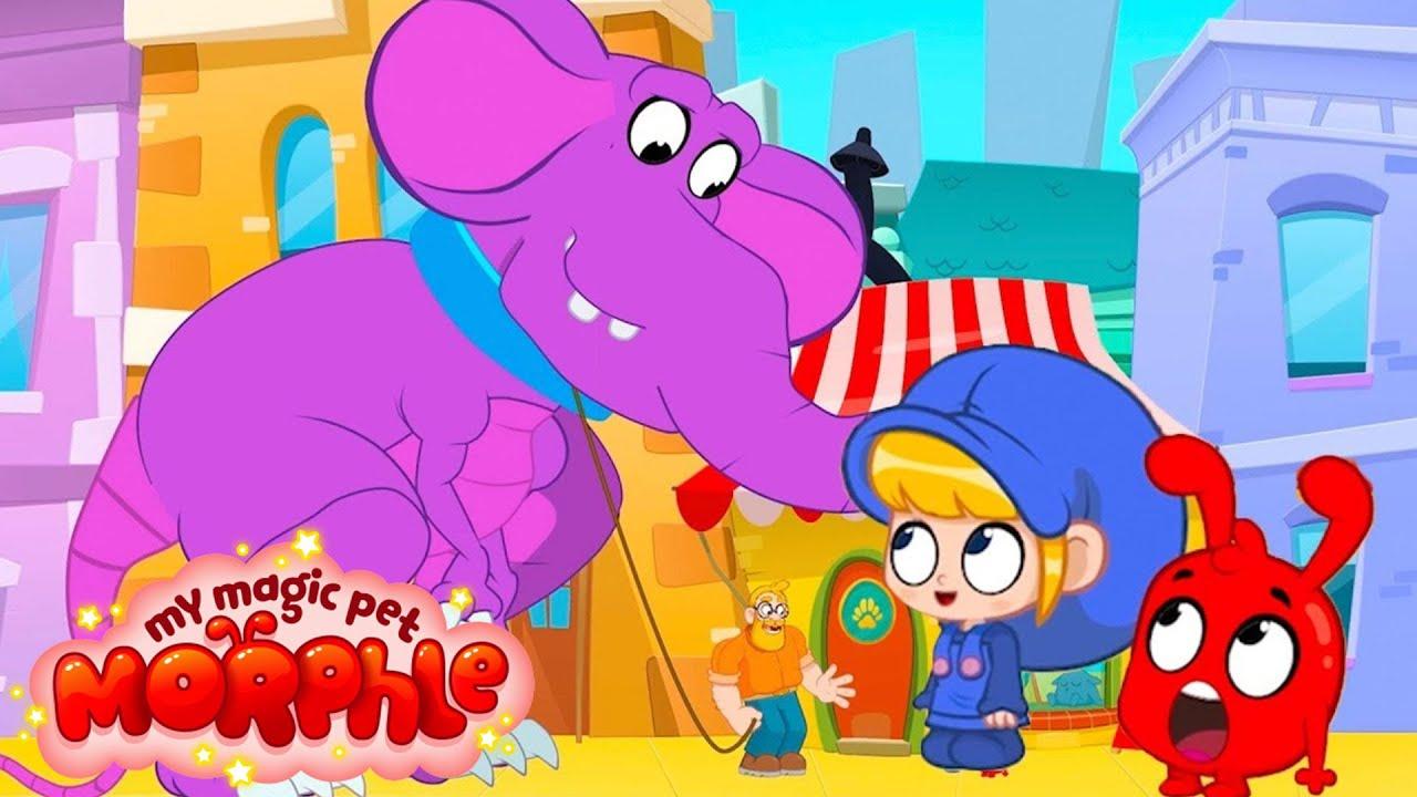 Mila and Morphle's New Giant Pet   Cartoons For Kids   Morphle TV   Sandaroo Kids - Kids Videos