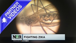CNBC's NBR: Zika & Mosquito Control - Use Suspend Polyzone by Bayer