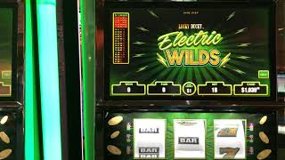 "VGT Slots ""Lucky Ducky Electric Wilds""  Lot of Different Bingo Patterns RED SPIN WINS Choctaw"