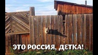 ВИДЕО ПРИКОЛ КАК ОТДЫХАЕТ ДЕРЕВНЯ ЛЕТО 2018