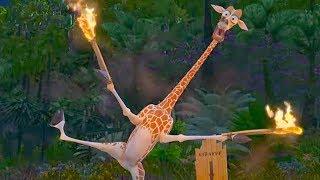 Madagascar: Melman Starts a Fire thumbnail